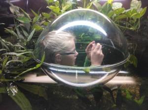 Ineke taking photos of frogs